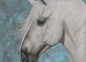 Cheval Lusitanien - 50x50 - acrylique