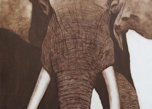 Elephant d'Afrique - 120x100