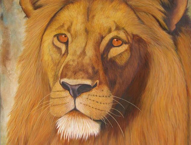 Lion d'Afrique - 100x80