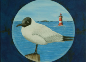 Mouette Rieuse 30x30