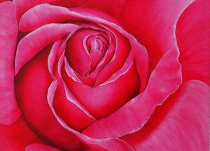 Rose fuschia - 70x70 - Acrylique