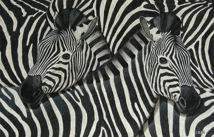 Les zèbres - 120x80 - Acrylique